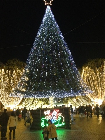 20111214-213317.jpg